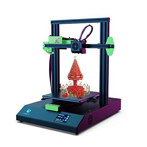 LABISTS Impresora 3D, Tamaño de Impresión 220 x 220 x 250mm, Impresora 3D...
