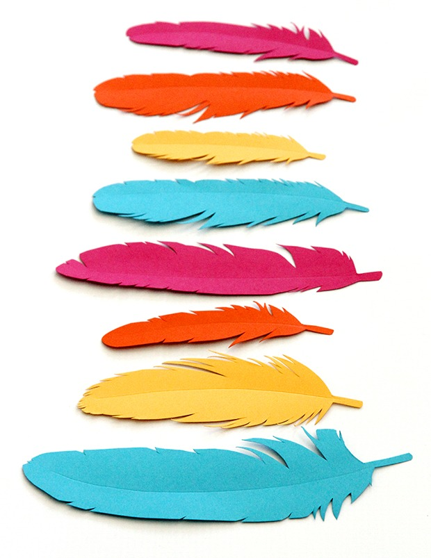 Feather Gift wrap 061