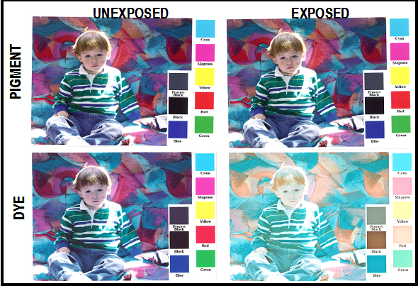 tinta dye vs pigmentada