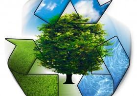 Ecología sostenible también en los cartuchos.
